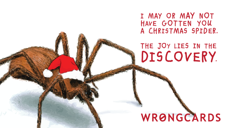 I may or may not have gotten you a Christmas spider. The joy lies in the discovery.