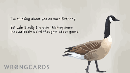 I'm thinking about you on your birthday. but admittedly, i'm also thinking indescribably weird thoughts about geese.