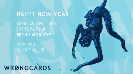Happy New Year. Have fun out there but remember: spider monkeys. They're a silent killer.