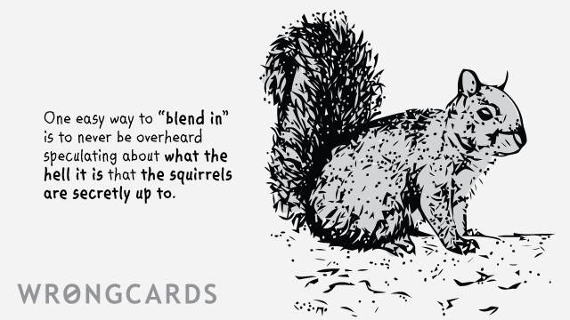 Ecard text: One easy way to 'blend in' is to never be overheard speculating about what the hell it is that the squirrels are secretly up to.