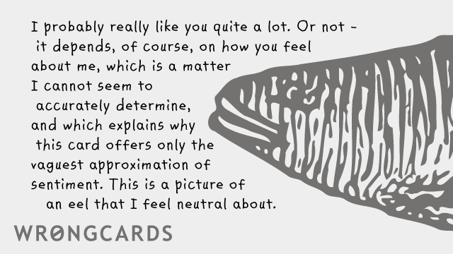 Ecard text: I probably really like you quite a lot. Or not - it depends of course on how you feel about me, which is a matter I cannot seem to accurately determine, which is why this card offers only the vaguest approximation of sentiment. This is a picture of an eel